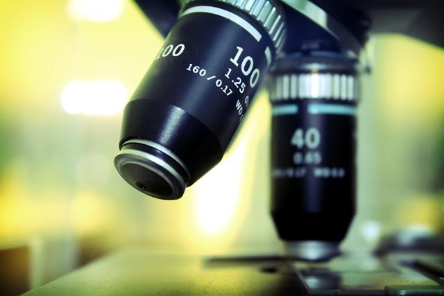 pragas-urbanas-bh1 Biólogo em uma empresa de dedetização: é necessário? Dedetização