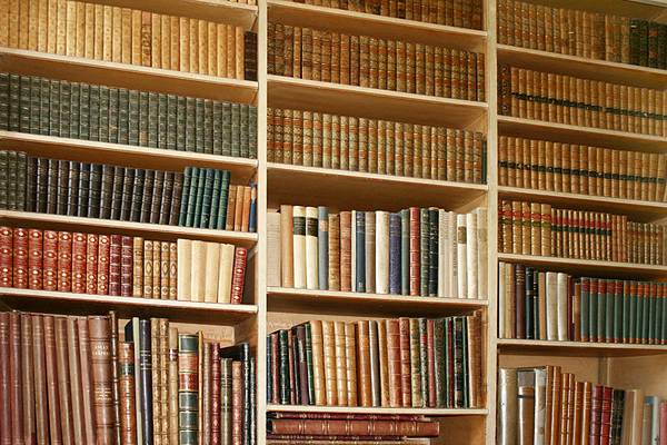 biblioteca_pragas Como combater pragas urbanas em bibliotecas Dicas Prevenções