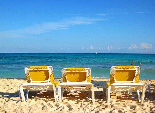 aproveite-as-ferias-para-dedetizar-sua-casa Aproveite as férias para dedetizar sua casa Dedetização