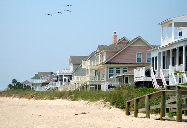 eliminar-pragas-casa-de-praia Como eliminar pragas de casa de praia Desinsetização