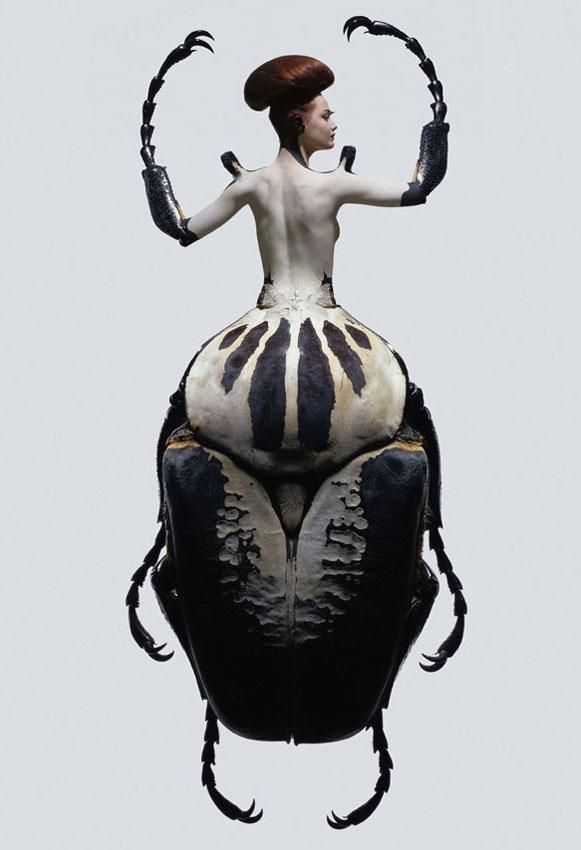 foto-mulher-inseto Metamorfose de mulheres e insetos rendem ensaio fotográfico Fotografia Papo de Praga
