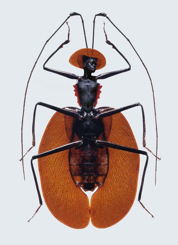 mulher-inseto Metamorfose de mulheres e insetos rendem ensaio fotográfico Fotografia Papo de Praga