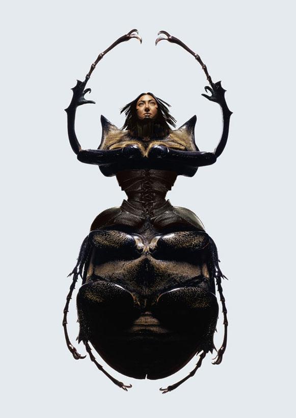 mulheres-insetos-1 Metamorfose de mulheres e insetos rendem ensaio fotográfico Fotografia Papo de Praga