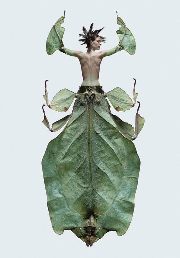 mulheres-insetos-2 Metamorfose de mulheres e insetos rendem ensaio fotográfico Fotografia Papo de Praga