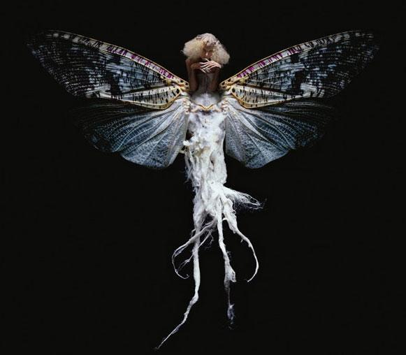 mulheres-insetos-3 Metamorfose de mulheres e insetos rendem ensaio fotográfico Fotografia Papo de Praga