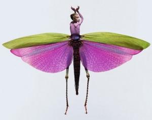 mulheres-insetos-300x237 mulheres insetos