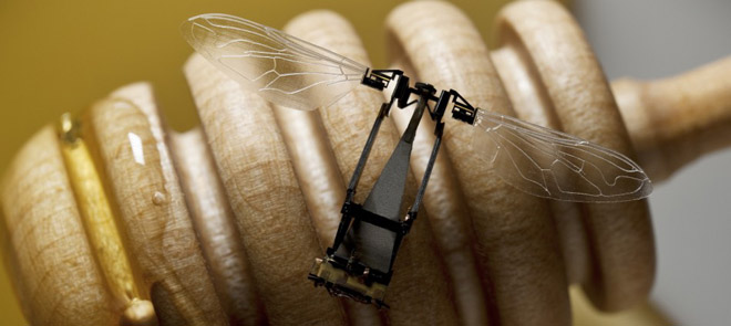 inseto-robo- Primeiro inseto mecânico está aprendendo a voar Curiosidades