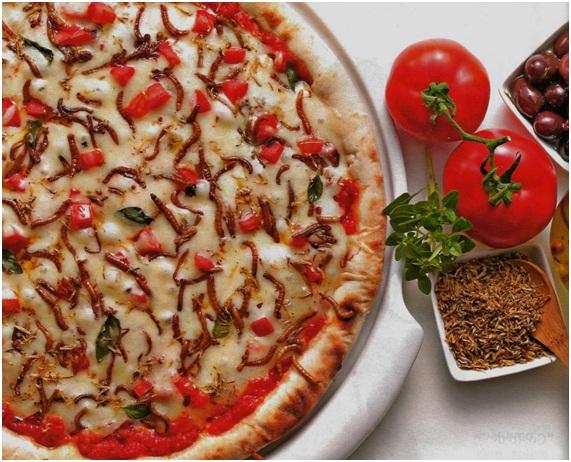 pizza Conheça o Almanaque Papo de Praga e coma insetos Papo de Praga