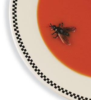 MOSCA-NA-SOPA A mosca do Raul Papo de Praga