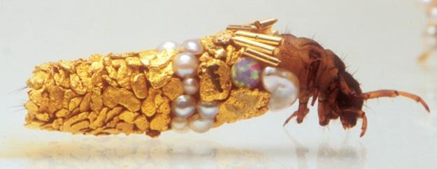 caddisfly-duprat Os insetos joalheiros de Richard Duprat Papo de Praga
