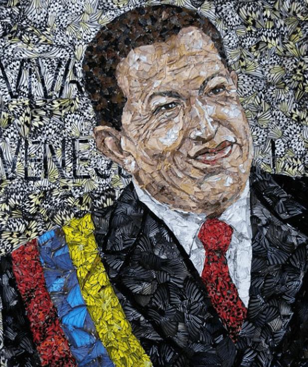 asas_borboletas_Chavez