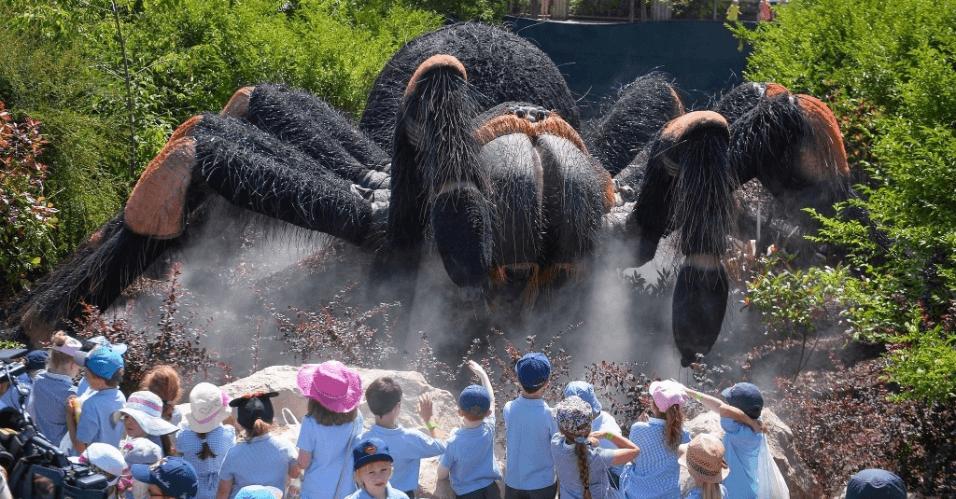 tarantula_gigante Insetos gigantes atraem turistas na Inglaterra Papo de Praga