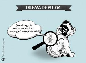 pulgatorio-300x220 pulgatorio
