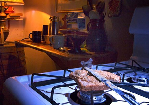 rato_fogao Pergunte ao Especialista: Quero dedetizar meu fogão, como faço? Perguntas ao Especialista