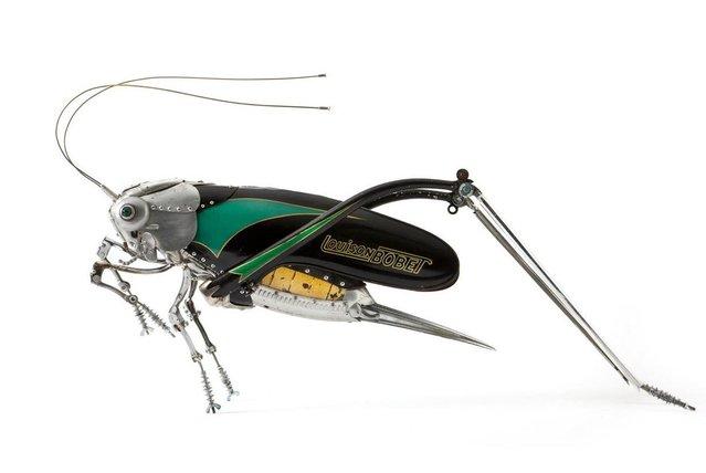 gafanhoto_sucata Arte inspirada em insetos dá vida a sucatas recicladas Papo de Praga