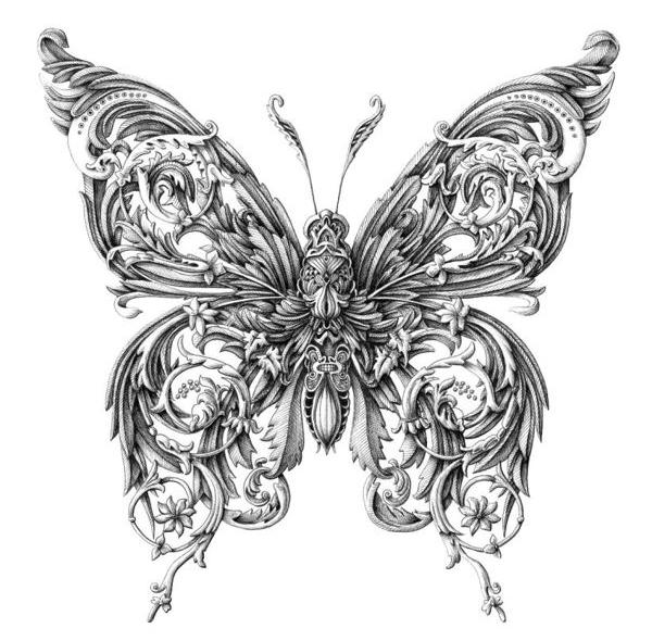 borboleta1 Artista europeu faz desenhos surpreendentes de insetos Papo de Praga