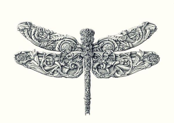 libelula Artista europeu faz desenhos surpreendentes de insetos Papo de Praga