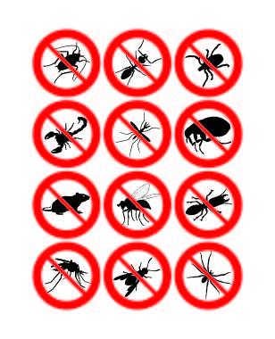 proibido_insetos-01 Nesse Carnaval previna-se dos insetos! Dicas Pragas Prevenções