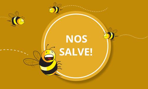 abelha_arte Aplicativo criado por brasileiros vai monitorar sumiço de abelhas Papo de Praga