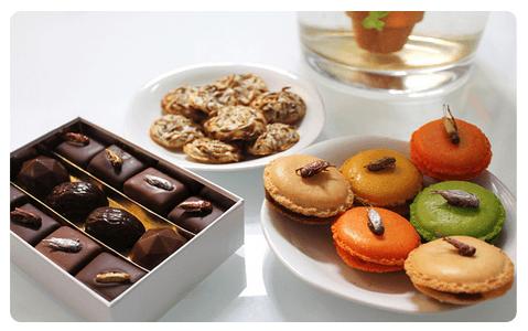 doces_de_insetos Empresa se especializa na fabricação de alimentos com insetos Papo de Praga