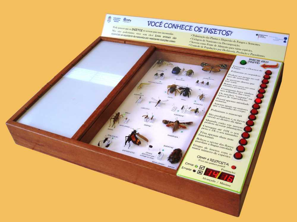 jogo_insetos_UFSC Universidade desenvolve jogo sobre insetos Papo de Praga