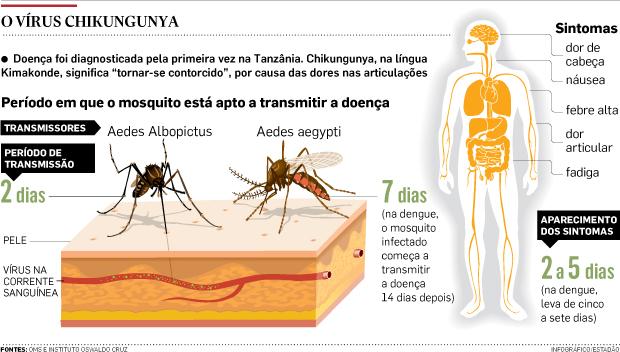 info_aedes_nova-doenca Aedes aegypti pode transmitir outra doença além de dengue e febre amarela Notícias Pragas Prevenções