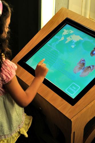 museu_insetos_painel-digital Museu americano tem exposição permanente de insetos Papo de Praga