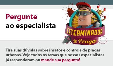 2768_site_exterminador_de_pragas_banner_contato_02_06_15 orcamento_contato_duvidas_pergunte_ao_especialista