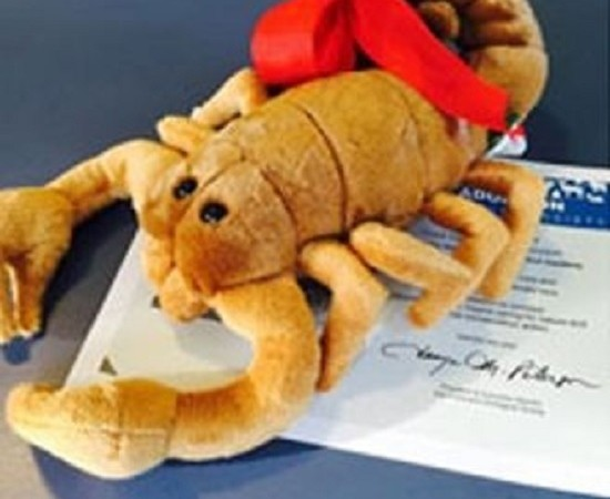jpg-550x450 Nos EUA, zoo oferece insetos para 'homenagear' ex-parceiros Perguntas ao Especialista