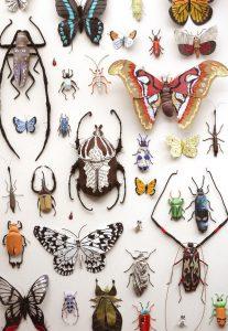 insetos_kate_kato_01-207x300 insetos_kate_kato_01