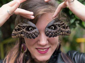 fe6b9effcd7fc8781af9a5c6219729ea-300x223 Entomologista faz fotos com insetos no rosto para falar de espécies Curiosidades Notícias