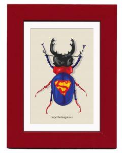 inseto_super-homem-248x300 inseto_super-homem