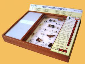 jogo_insetos_UFSC-300x225 jogo_insetos_UFSC